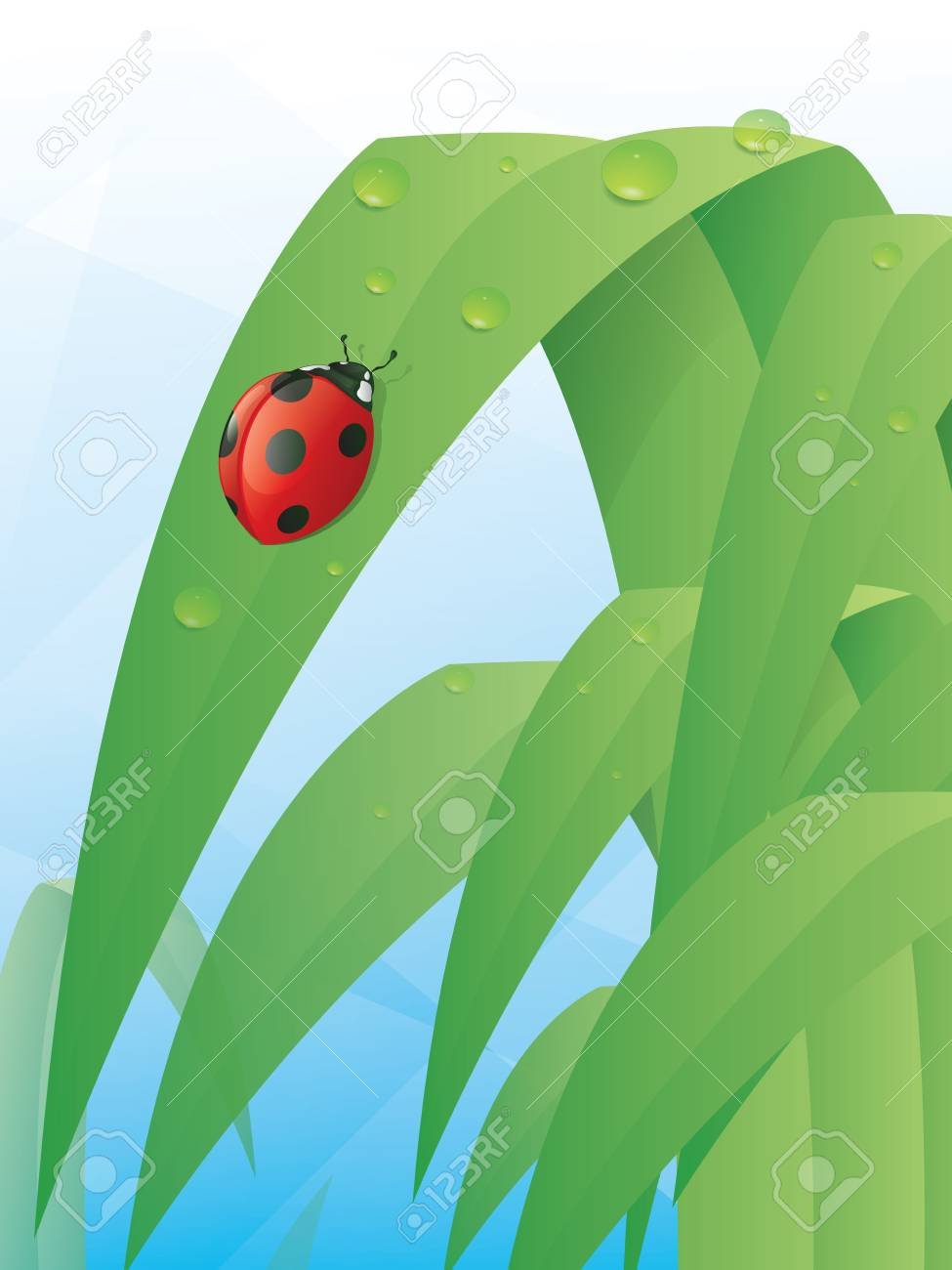 Ladybug on a Leaf Stock Vector - 16674582