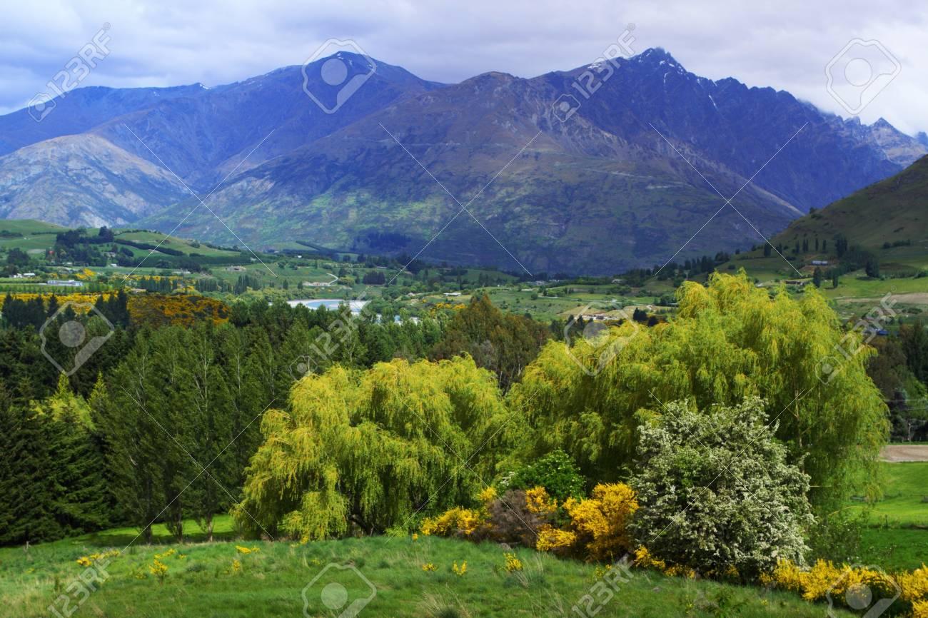 Molto Bellissimi Panorami Di Montagna A Queenstown, Nuova Zelanda Foto  ZE23