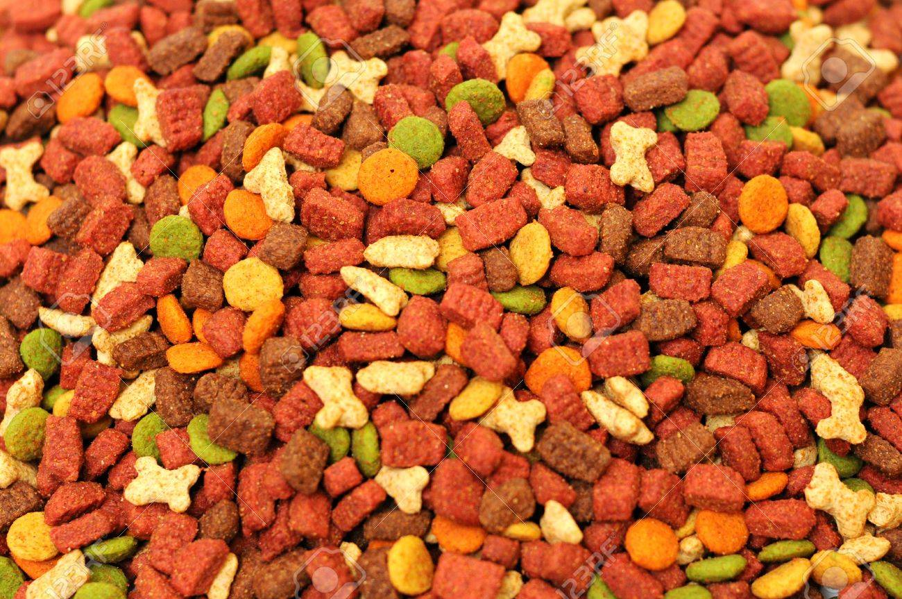Different Types Of Dry Food For Pets Stock Photo, Picture And ...