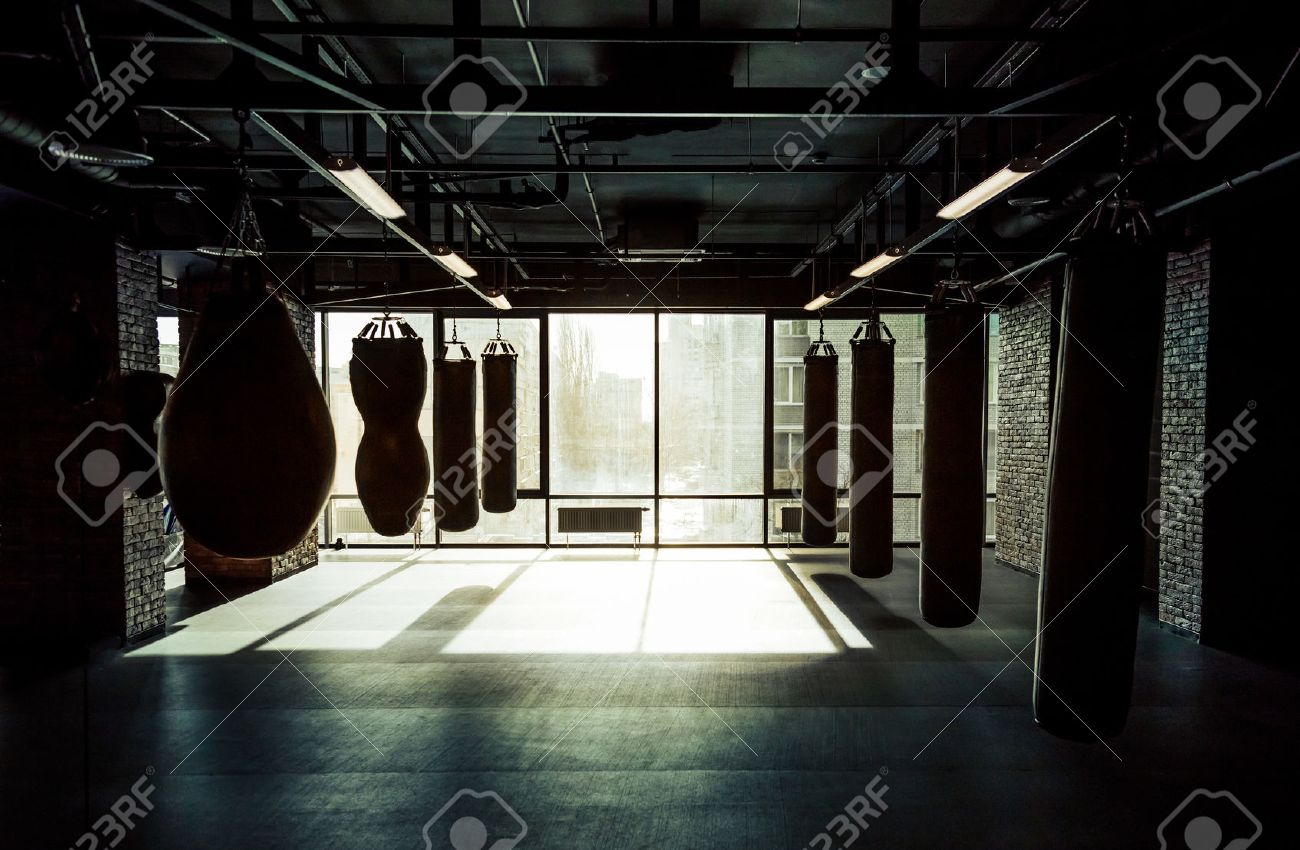 Empty modern fight club with punching bags of different shapes for practicing martial arts - 52670510