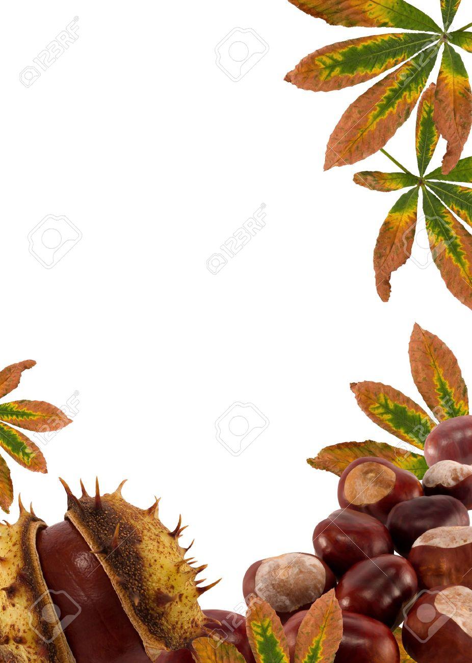 Castañas Y La Naturaleza Leaves.Autumn Marco De Fondo Para El Texto ...
