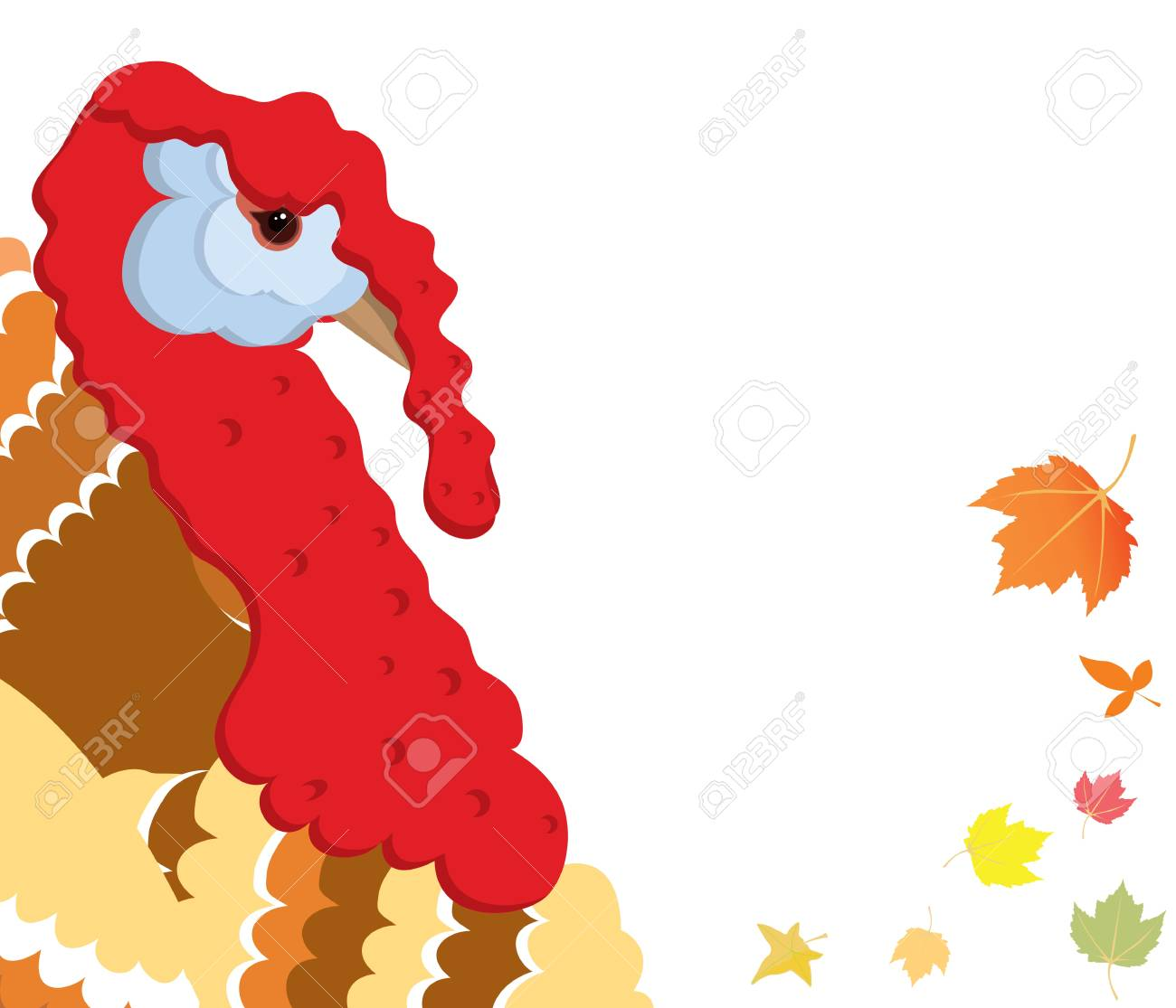 Vector illustration of turkey bird on whiye background Stock Vector - 15917217