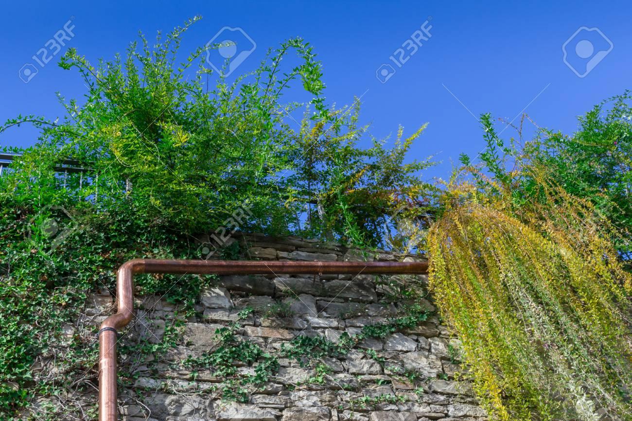 Bakstenen Muur Tuin : Goot van koper geïnstalleerd op de bakstenen muur tussen de planten