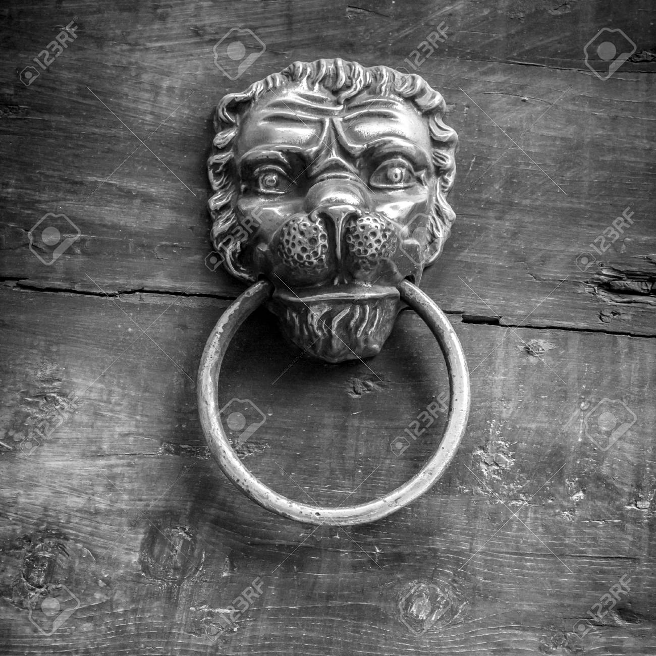 Beau Black And White Shot Of A Classic Door Knocker In The Shape Of A Lion Stock