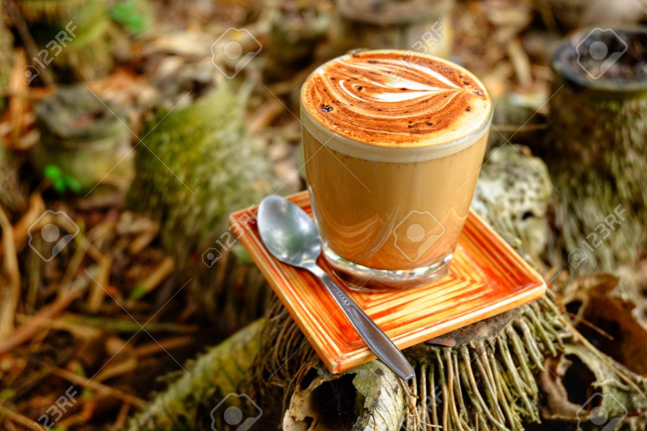 mocha coffee mug mocha coffee cup put on bamboo stump stock photo