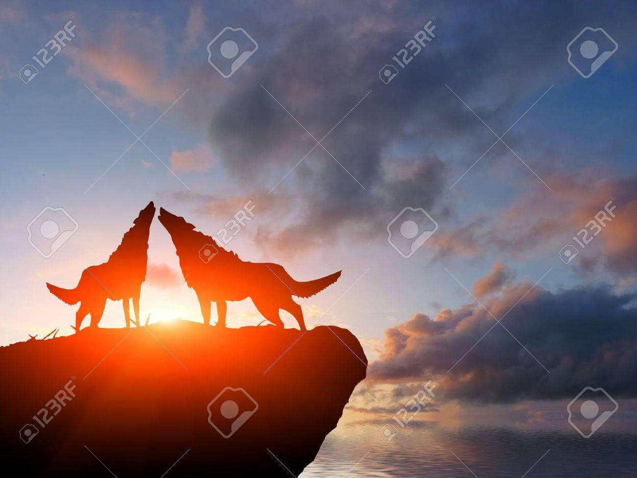 two wolves on a mountain top - 10343566