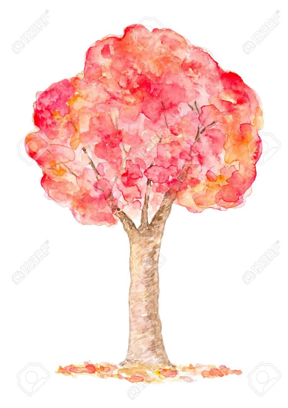 Aquarell Herbst Baum Hand Gezeichnet Und Gemalt Isoliert Auf