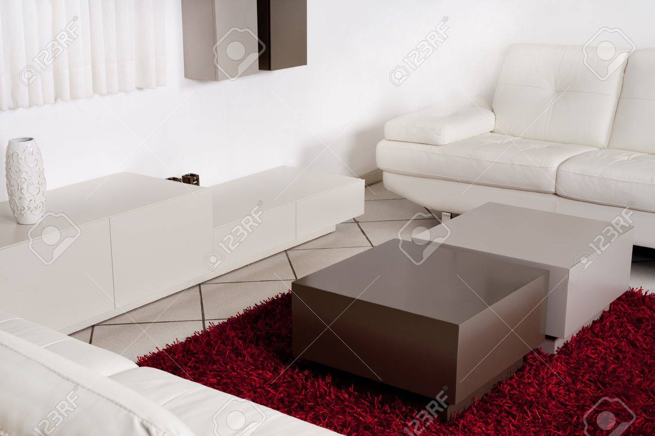 Modern Interior Of A Room With White Leather Couch And Fury Red.. Stock Photo, Picture And Royalty Free Image. Image 7882456.