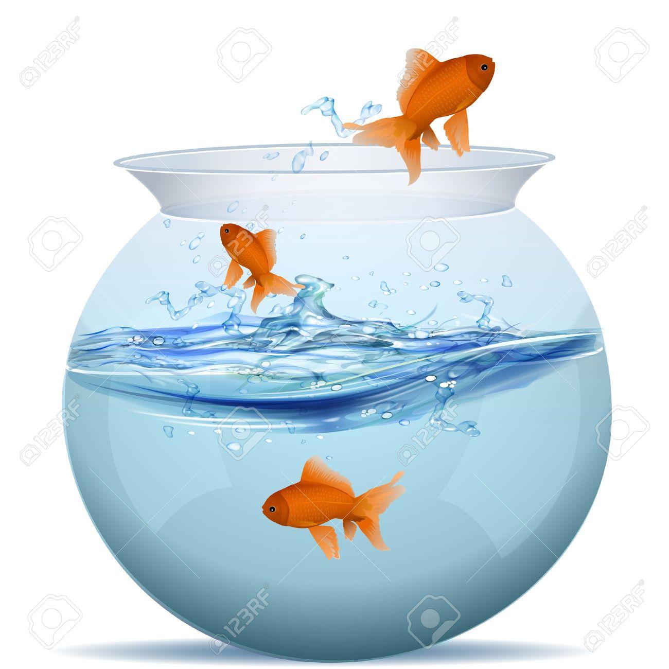 illustration of fish tank on white background Stock Vector - 8248274