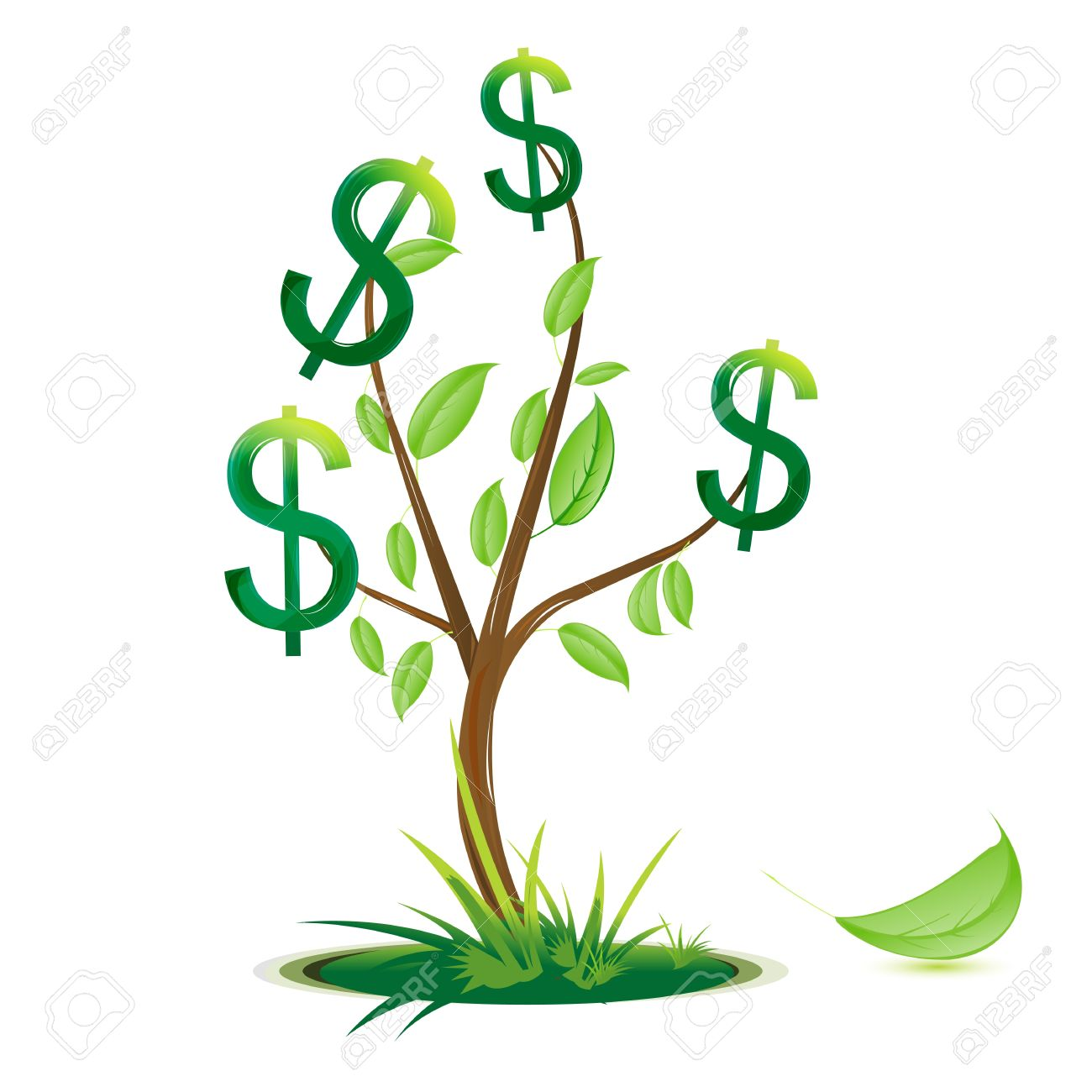 Dollar tree - Vector Illustration Of Dollar Tree On White Background