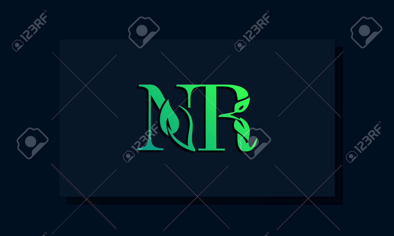 Minimal leaf style Initial NR logo. This logo incorporate with leaf and two letter in the creative way. It will be suitable for ECO, green, nature, growth and herbal related Brand or company. - 163852422