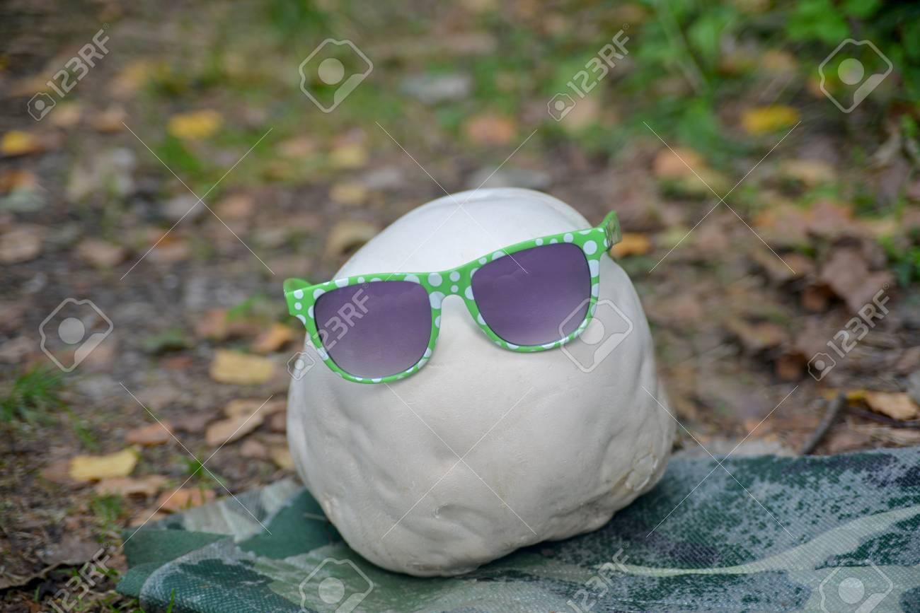 Banque d images - Tout le monde a habillé blanc puffball géant avec des  lunettes de soleil modernes. Histoire de la mode et les champignons  comestibles. 59d948755a52