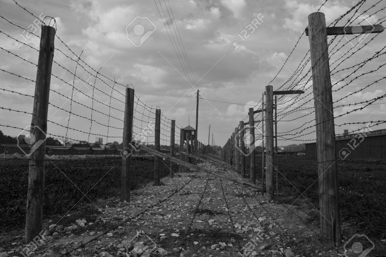 Two Rows Of Barb-wire Fence In Majdanek Concentration Camp... Stock ...