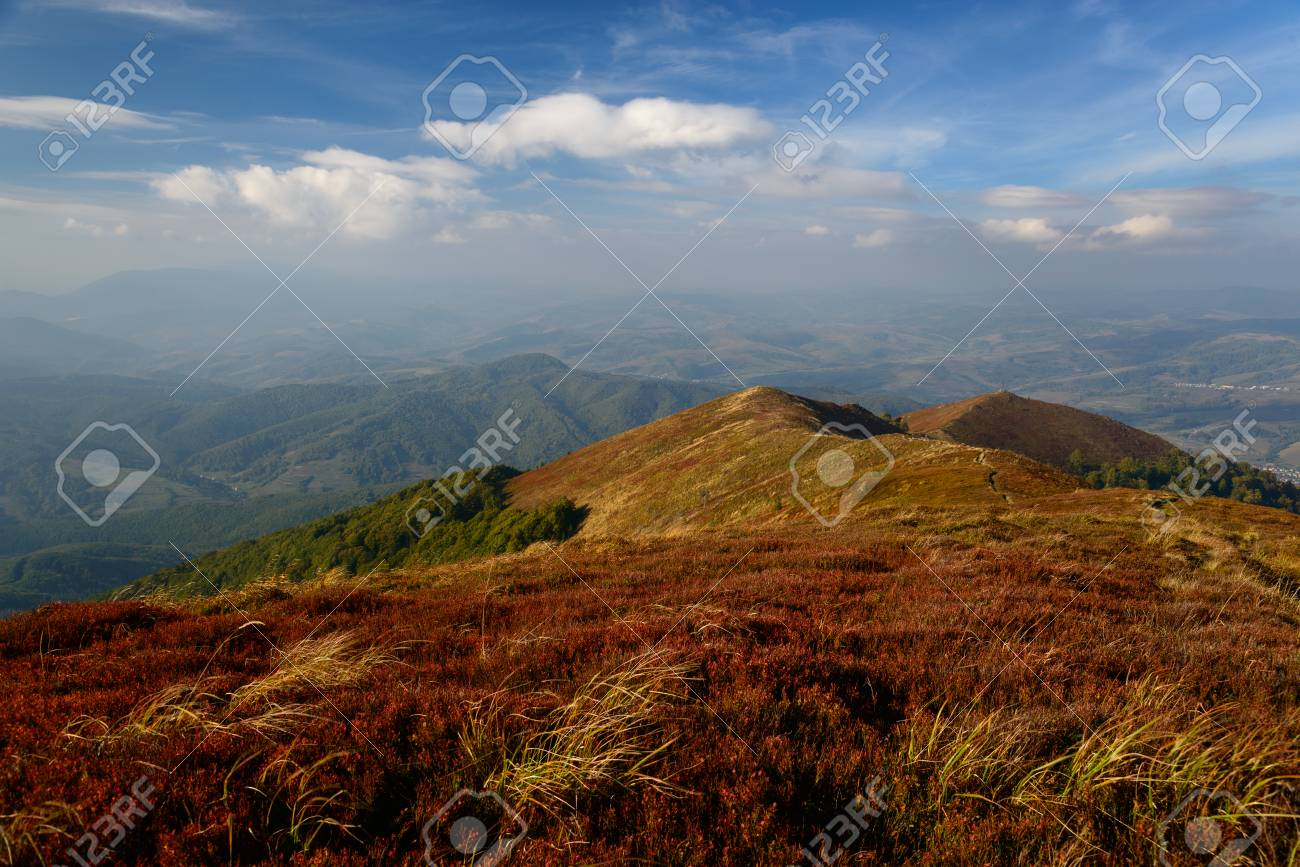 Red plants carpet covers mountains. Ranges and blue sky in background. Stock Photo -