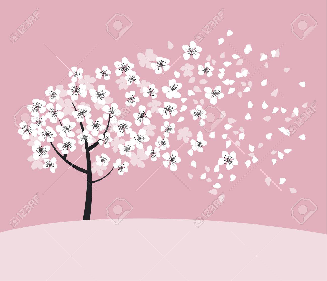 White Sakura Tree Blossom On Pink Rosy Background Elegant Naive