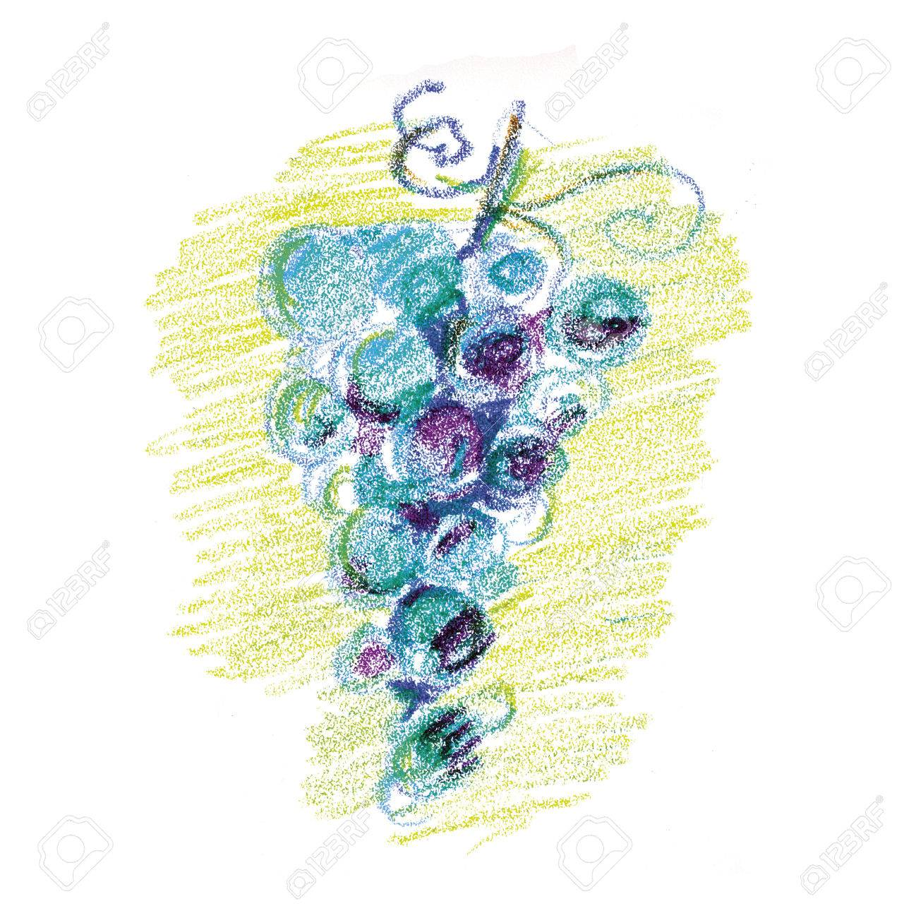 Bunch Of Wine Grape Concept Color Pencil Image Sketch Style Hand Drawn Raster