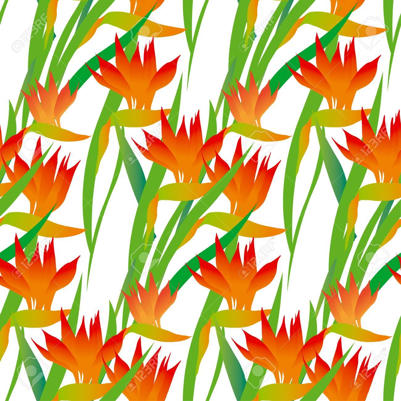 南国のエキゾチックな花のシームレスなパターン ベクトル イラスト のイラスト素材 ベクタ Image