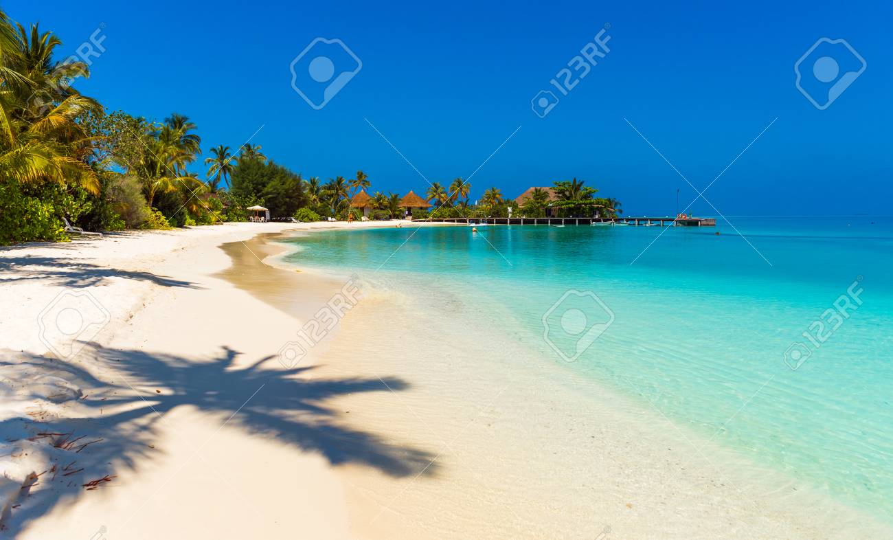 View of the paradise sandy beach, Maldives. Copy space for text - 110304295