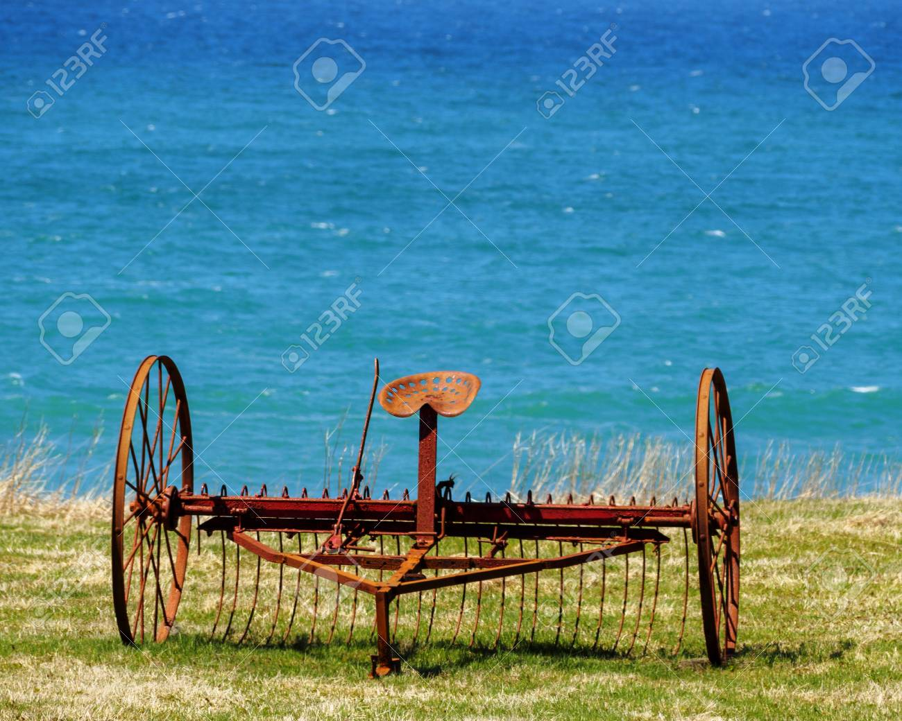Old horse drawn hay rake in a field by the ocean