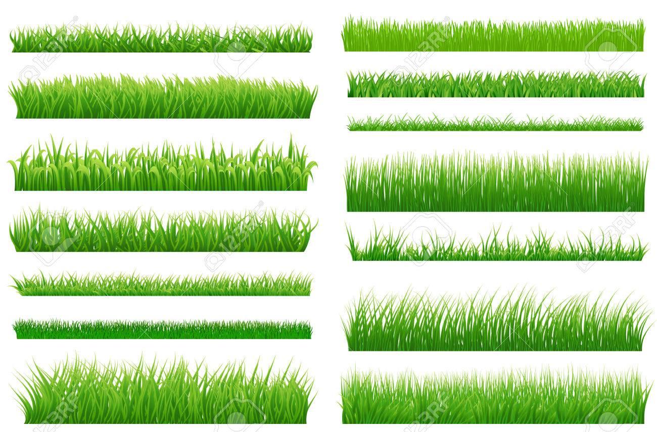 free grass vector