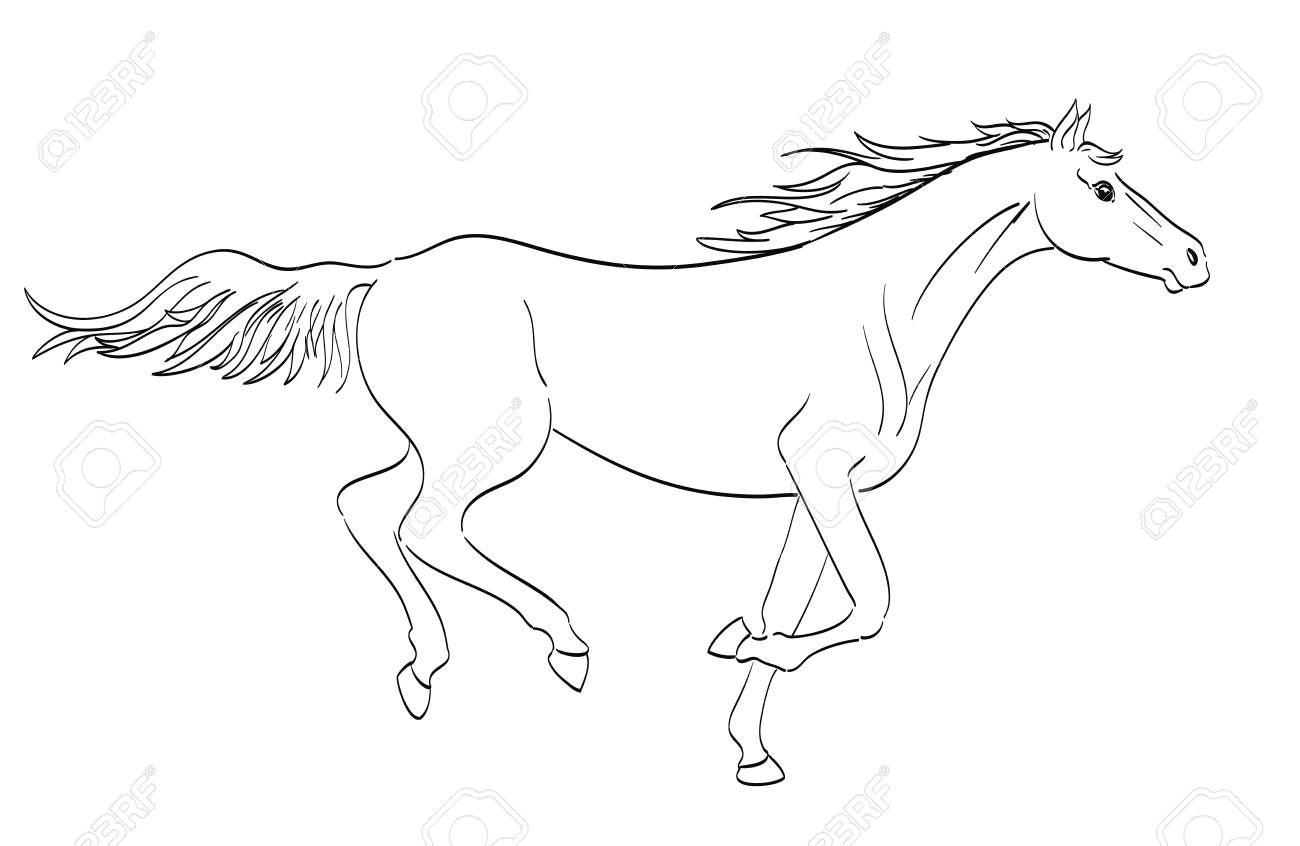 Running Horse Outline In Line Art Style Royalty Free Cliparts Vectors And Stock Illustration Image 71145908
