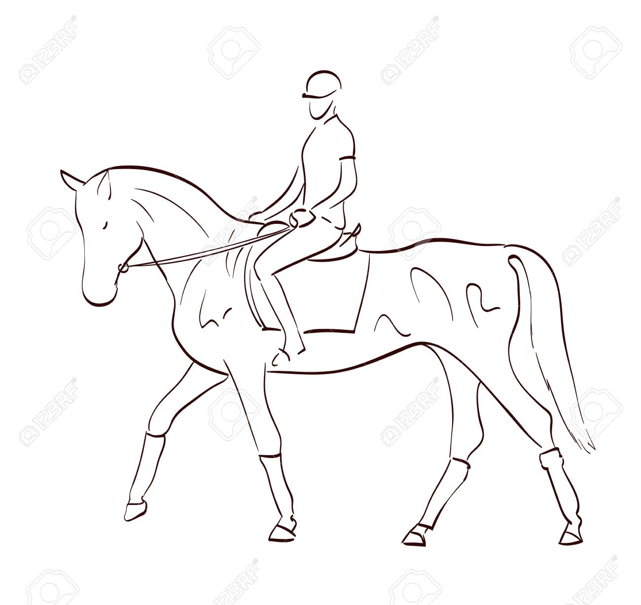 Riding A Horse Vector Illustration In Line Art Style Equestrian Royalty Free Cliparts Vectors And Stock Illustration Image 85421499