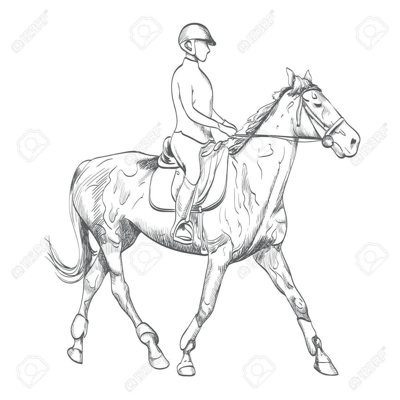 Hand Drawn Horse Riding Royalty Free Cliparts Vectors And Stock Illustration Image 85718704