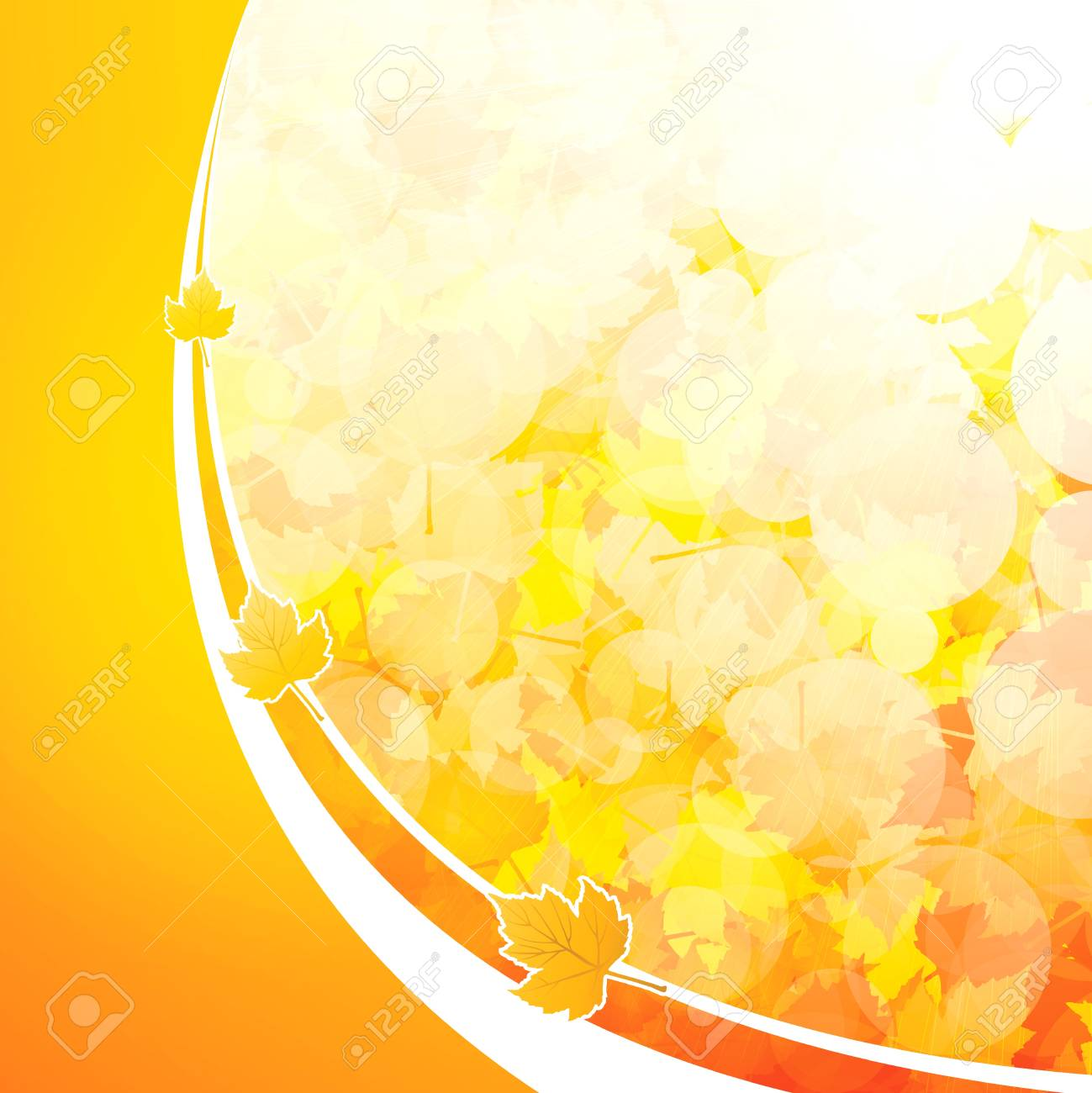 Autumnal leaf of maple and sunlight background Stock Vector - 10445777