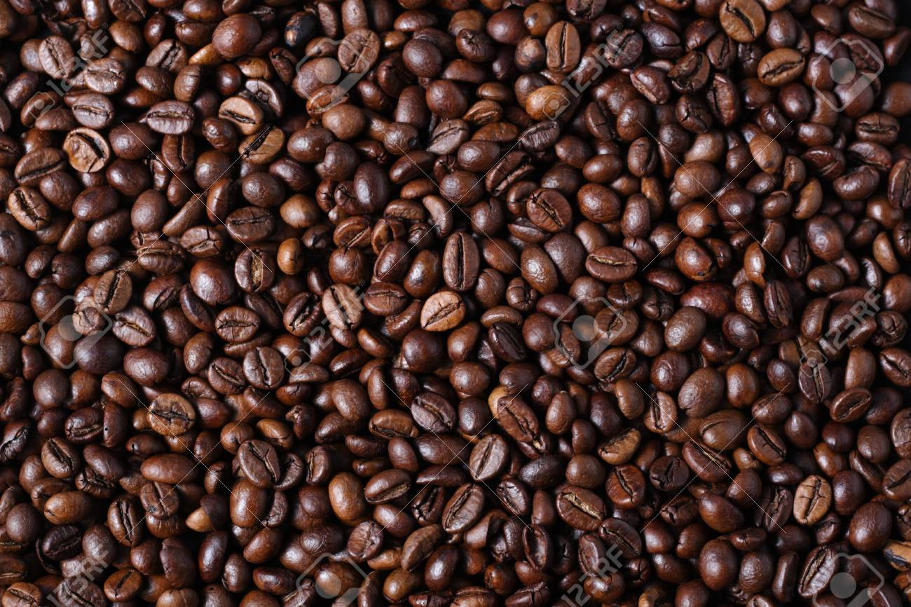 Robusta Coffee Beans Stock Photo, Picture And Royalty Free Image. Image  27689394.