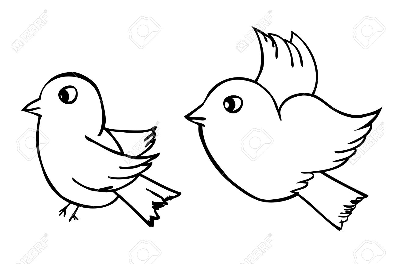 Two Birds Outline Wiring Diagrams Electronic Thermometer Circuit Diagram Tradeoficcom Hand Draw Sketch Rh 123rf Com Bird Template Small