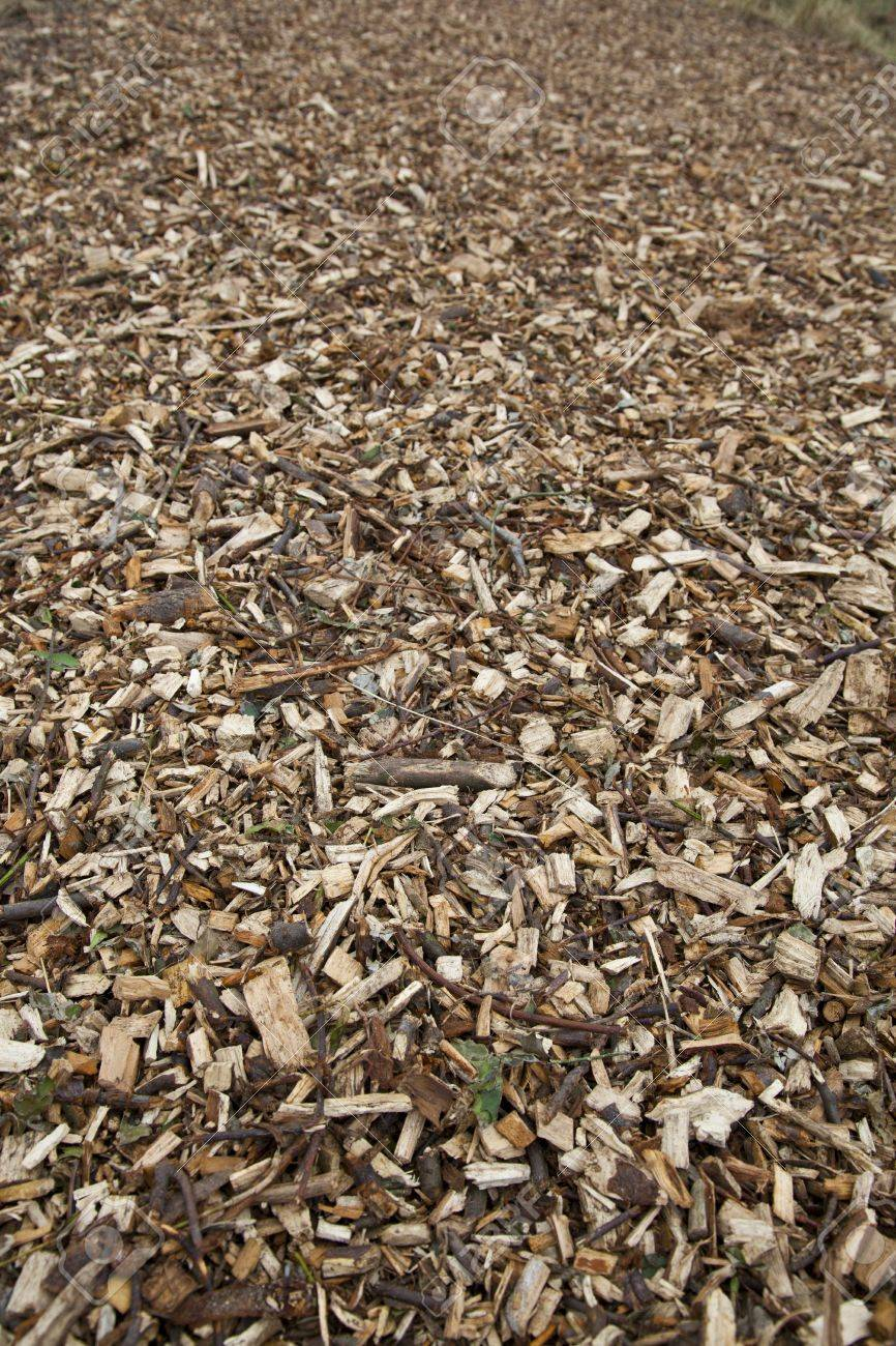 Road made of wood chippings Stock Photo - 9088033