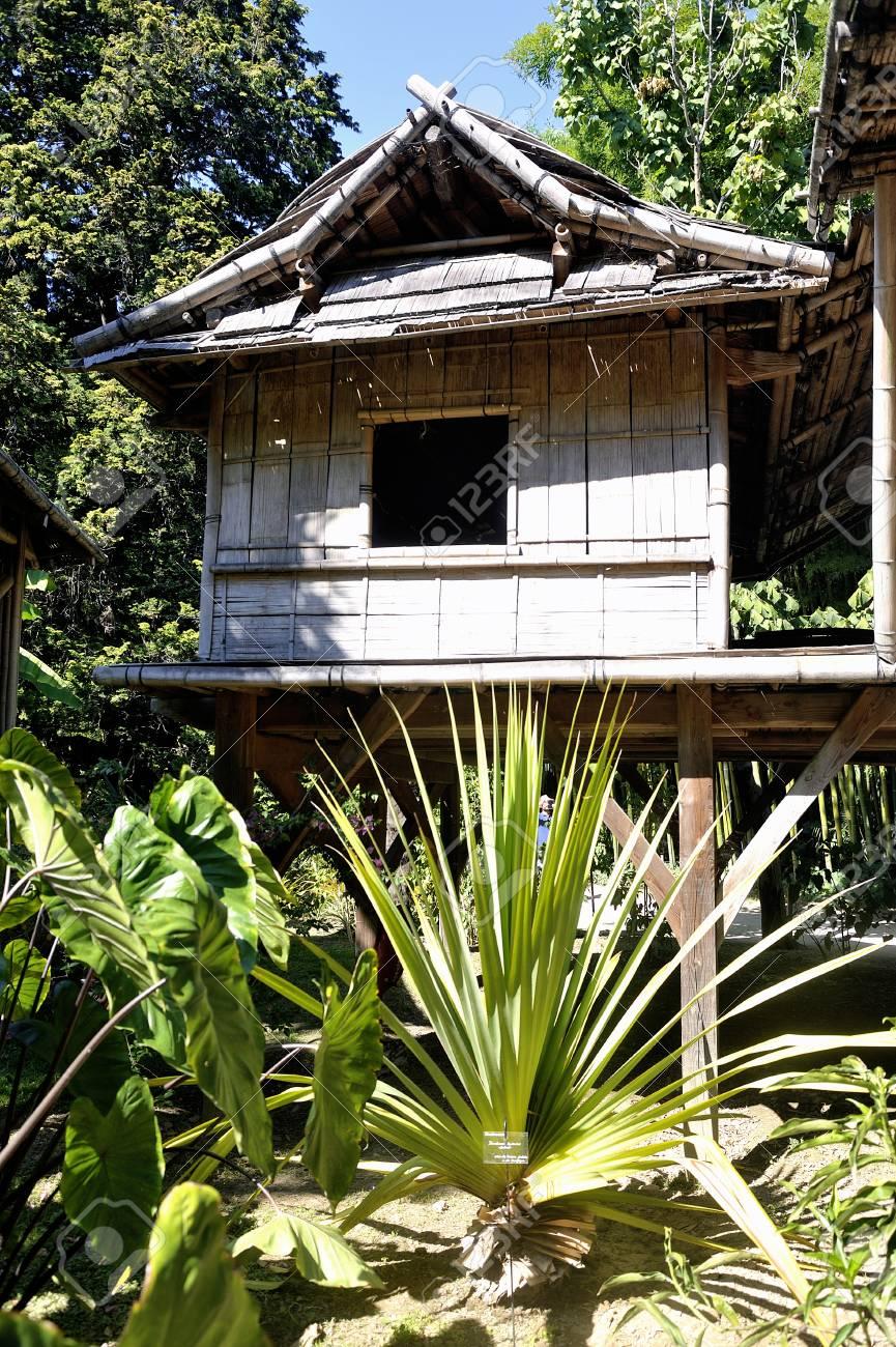 Maison de bambou dans le parc bambou Anduze où presque toutes les espèces  sont représentées et promues dans un jardin asiatique