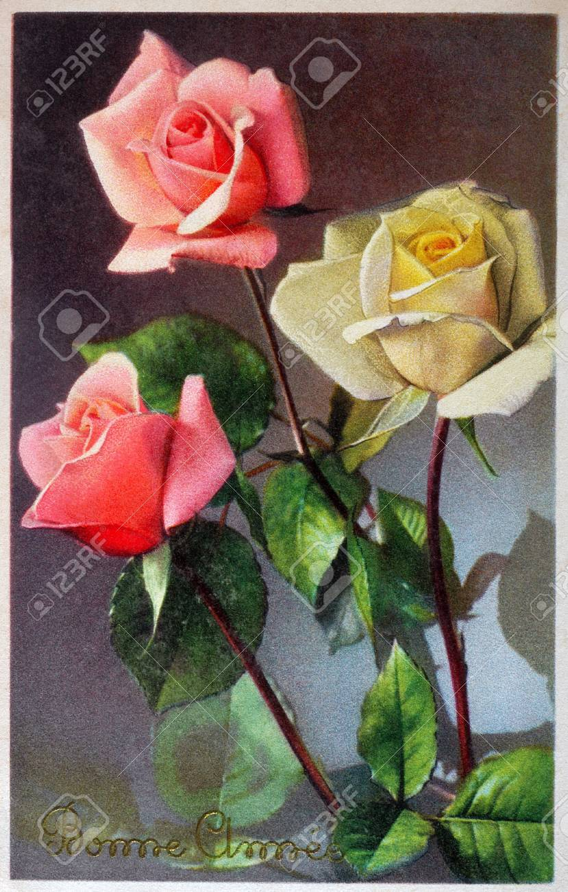 old postcard with of roses to wish a happy new year stock photo 53925132