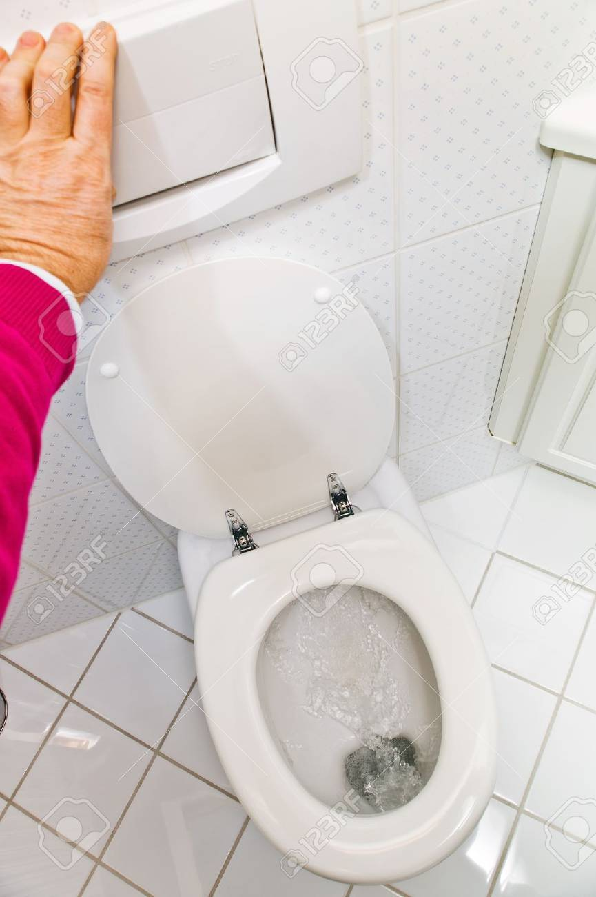 a sanitary flush toilet in a household  bathroom and toilet Stock Photo - 13776699