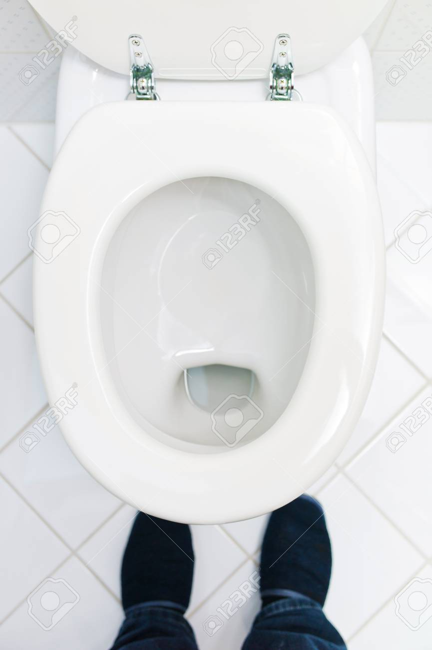 a sanitary flush toilet in a household  bathroom and toilet Stock Photo - 14563224