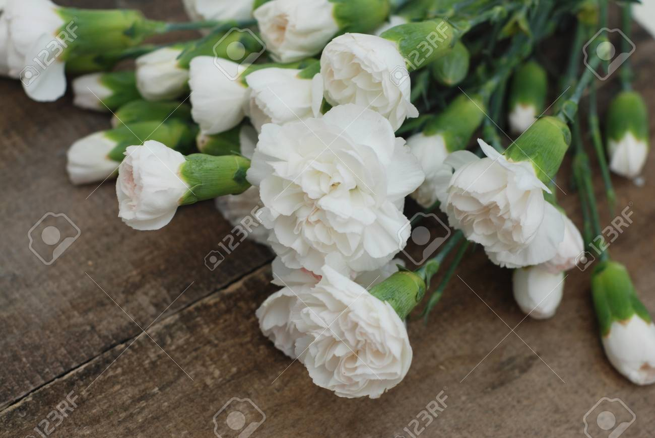 Bunch White Carnation Flower Bouquet Arrangement Composition.. Stock ...