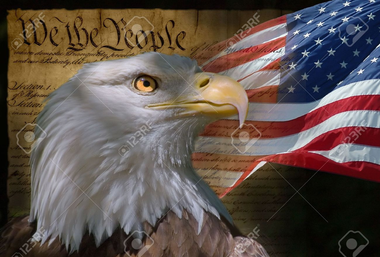 US Flag, Bald Eagle and Constitution montage Stock Photo - 478752