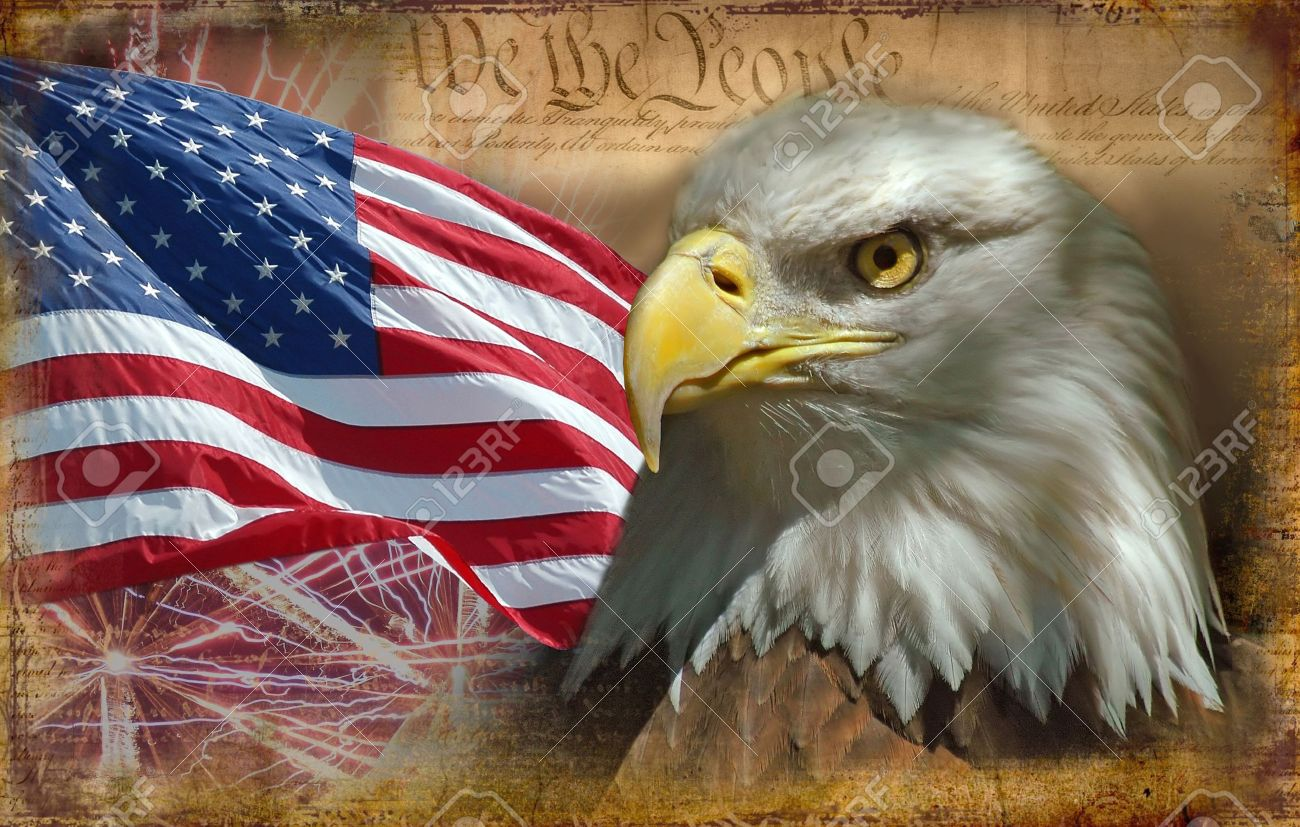 Uncategorized Bald Eagle American Flag head of bald eagle stock photo picture and royalty free image 491250