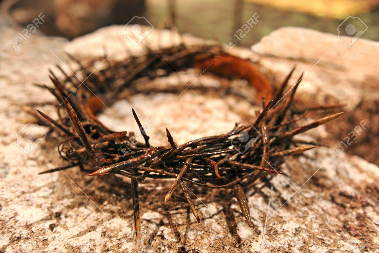 Crown of thorns over rock - with selective focus Stock Photo - 8204877