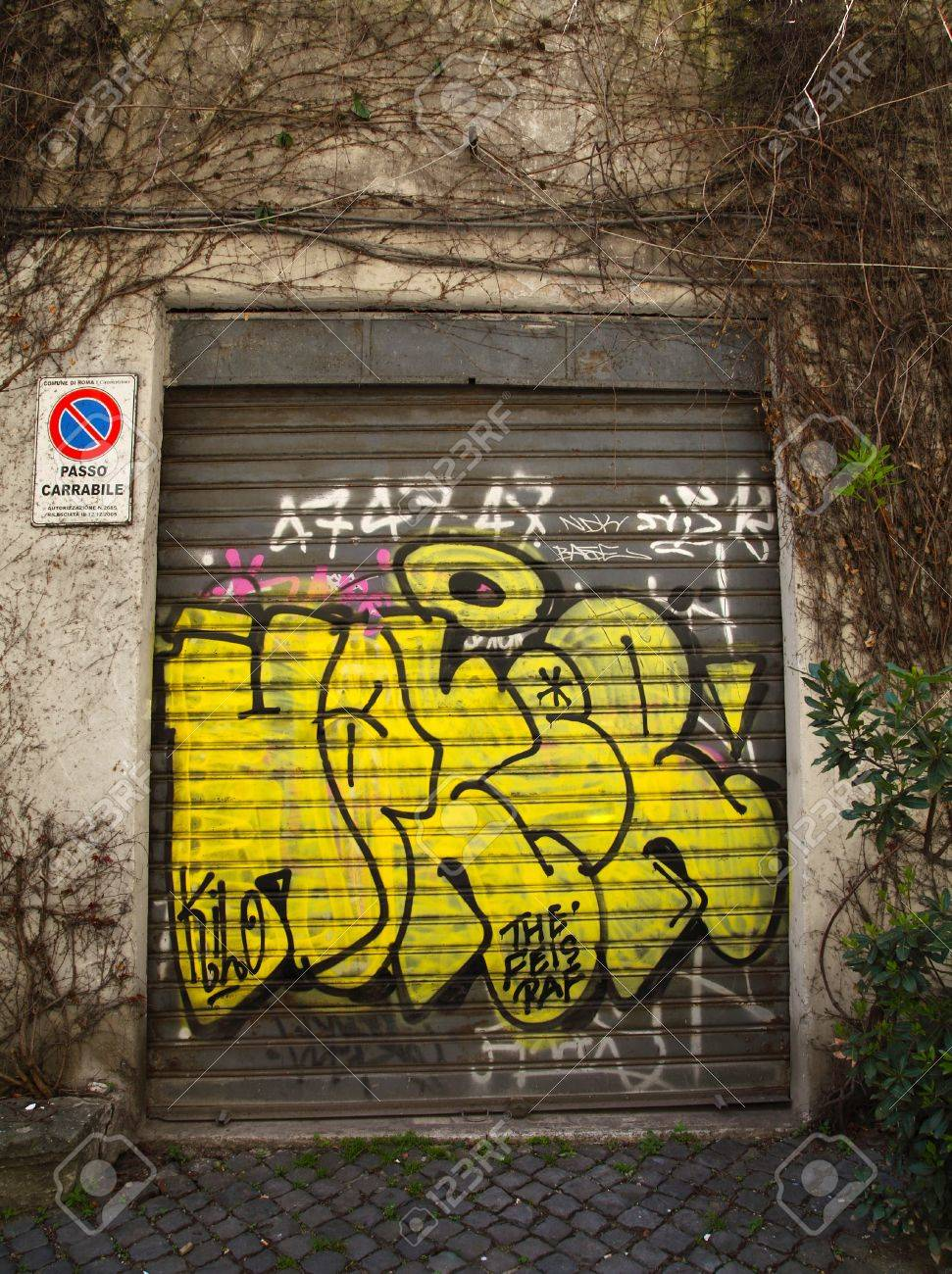 Graffiti Art On Doors In Rome Street Stock Photo, Picture And ...