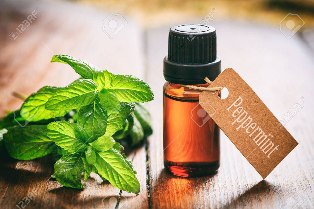 Fresh peppermint twig and oil on wooden background - 67315382