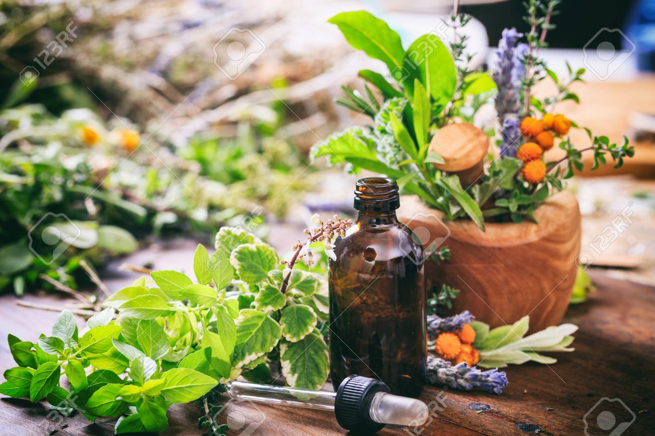 Variety of fresh herbs and mortar on wooden background - 67315396