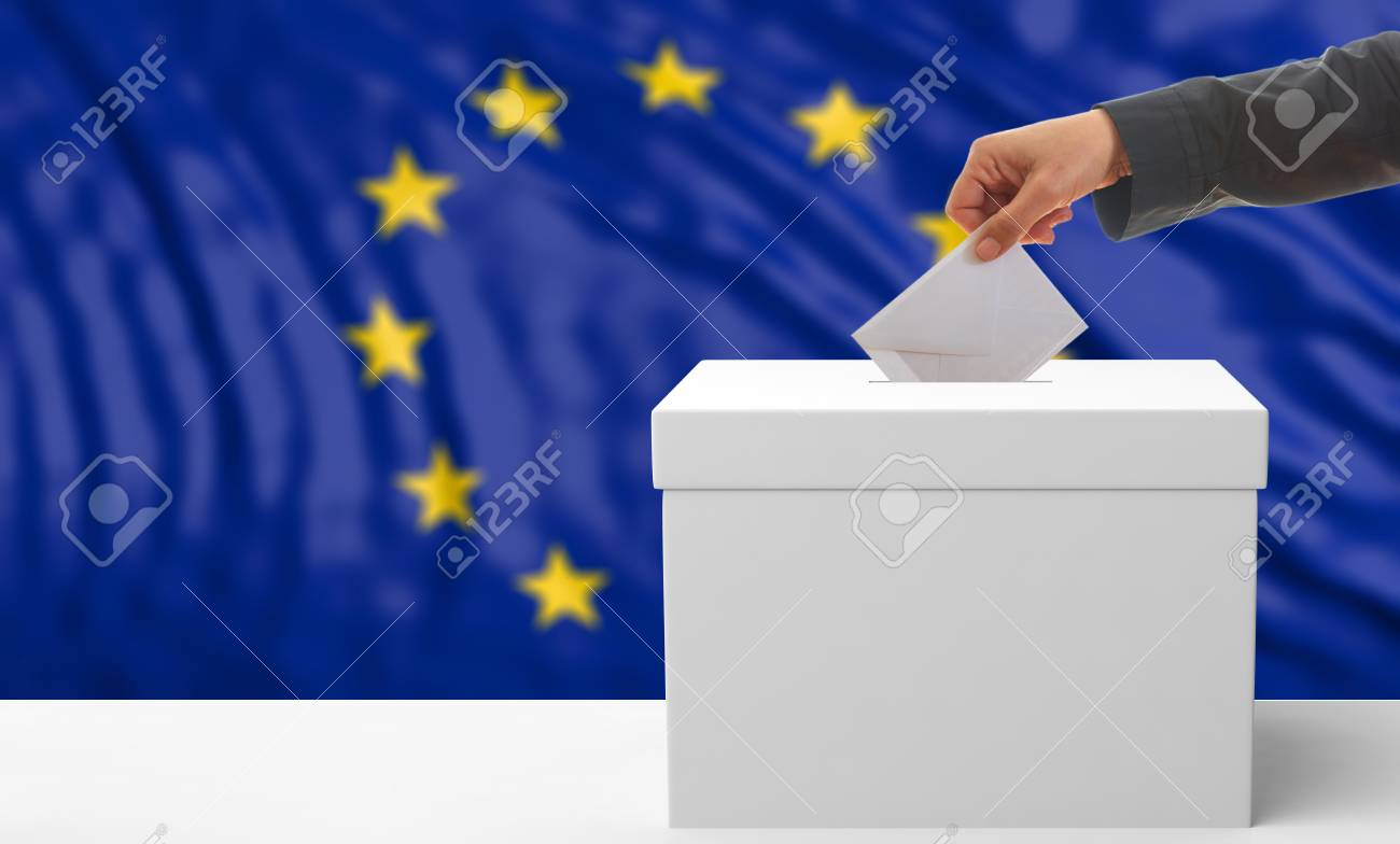 Voter on an waiving European Union flag background. 3d illustration - 73209730
