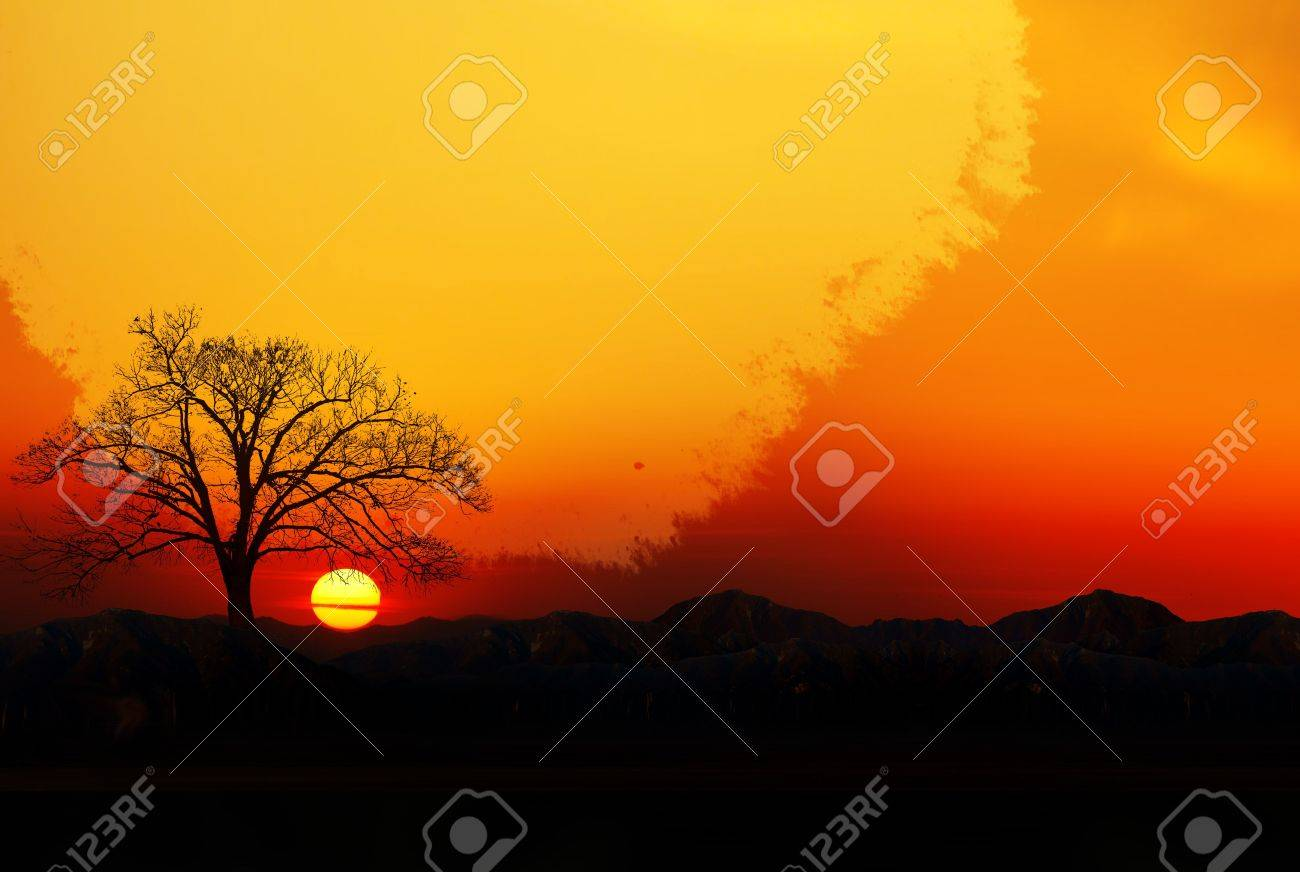 Romantic situation when sun rises and thw day begins Stock Photo - 4530257