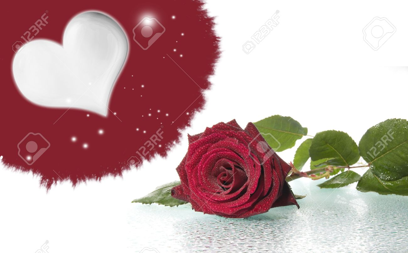 romantic picture with a red rose and heart stock photo, picture, Beautiful flower