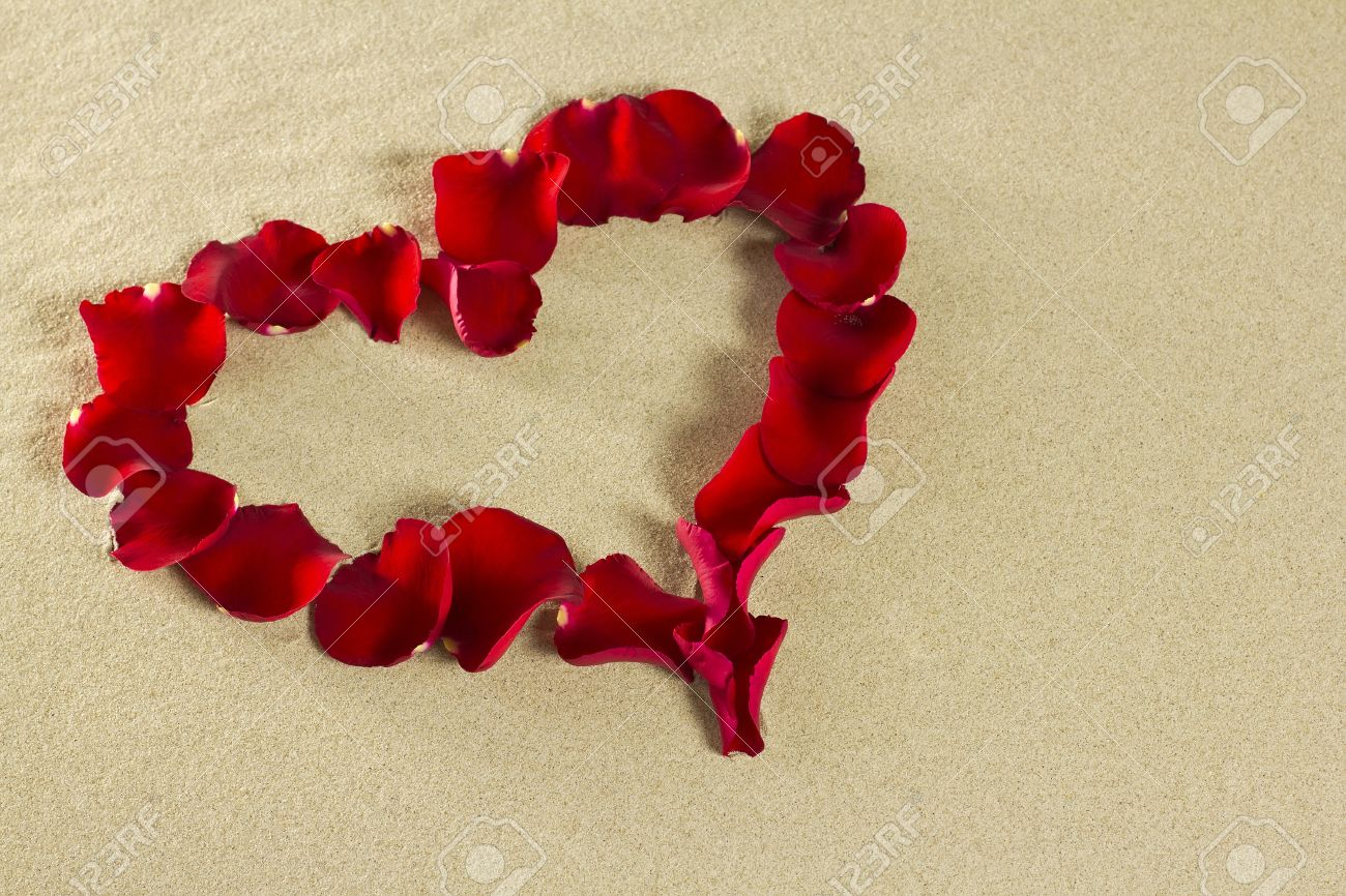Images of Rose Red Petals Heart - #SC