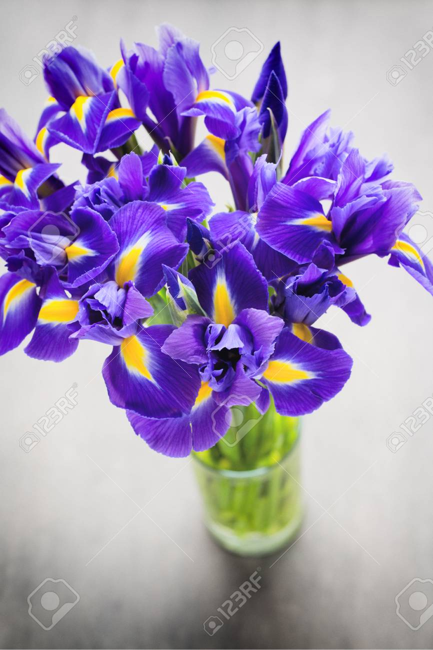 Purple Iris Flower Vase On The Background Stock Photo Picture And