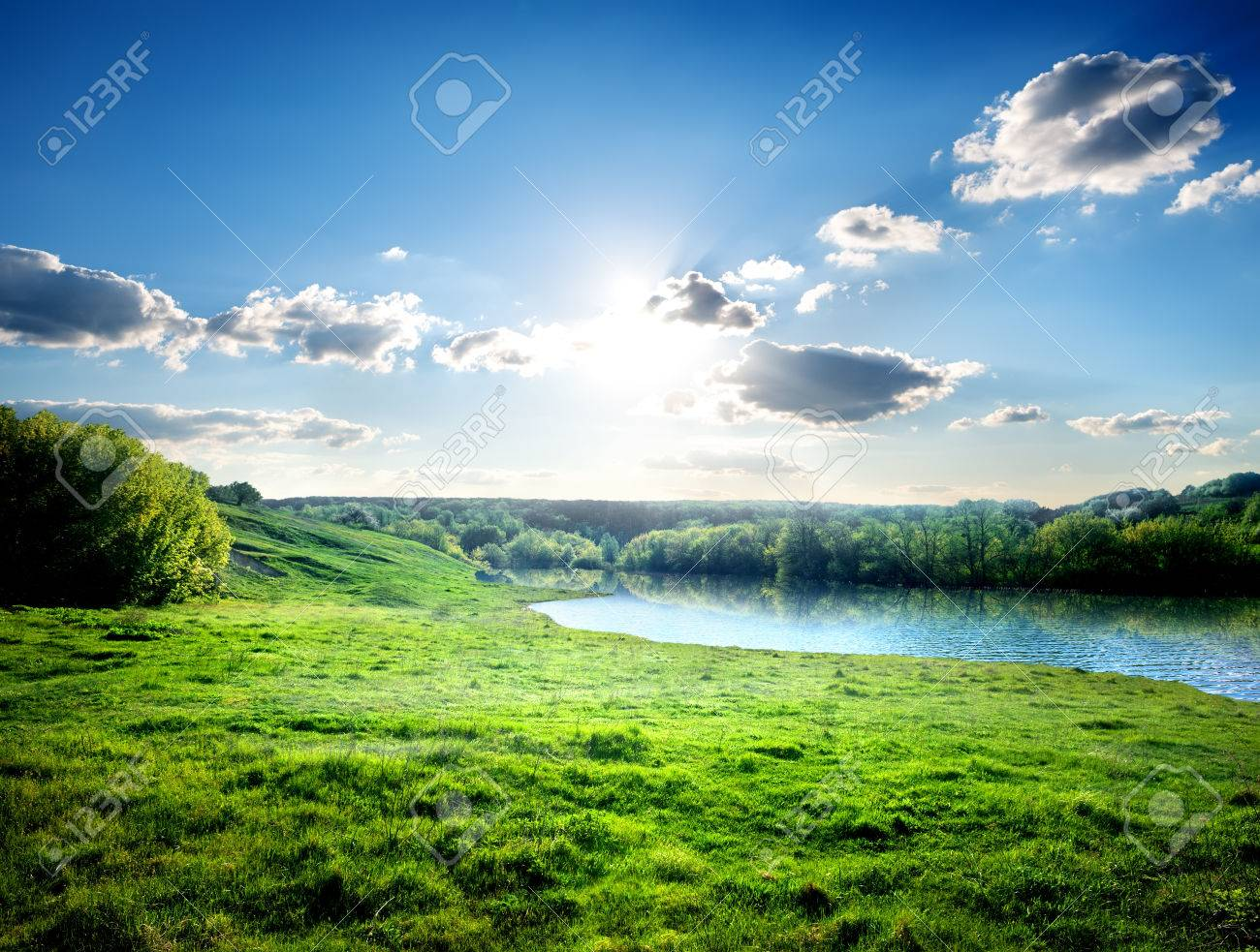 Green lawn near river in the forest - 35066420