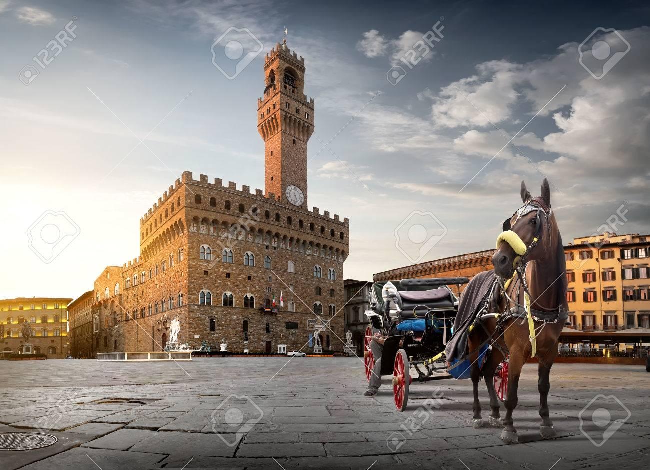 Horse on Piazza della Signoria in Florence at dawn, Italy - 69761632