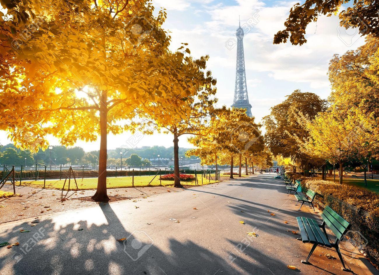 Sunny morning in Paris in autumn - 84620329
